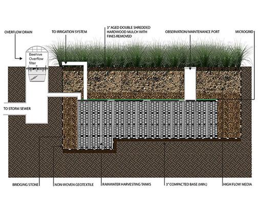 focalpoint biofiltration green infrastructure system cutaway diagram